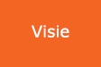 visie-support